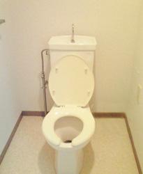 施工事例 : トイレ BEFORE